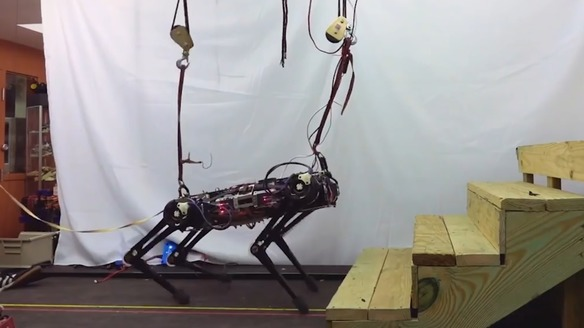MIT's Cheetah 3 Moves Us One Step Closer to Robotic Dogs